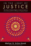In the Light of Justice: The Rise of Human Rights in Native America & the UN Declaration of the Rights of Indigenous Peoples
